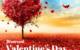 Divorced Valentine's Day Guide